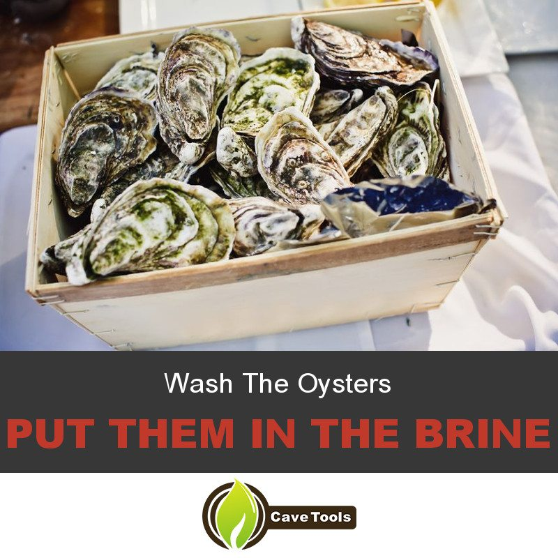 Wash The Oysters Put them in the brine