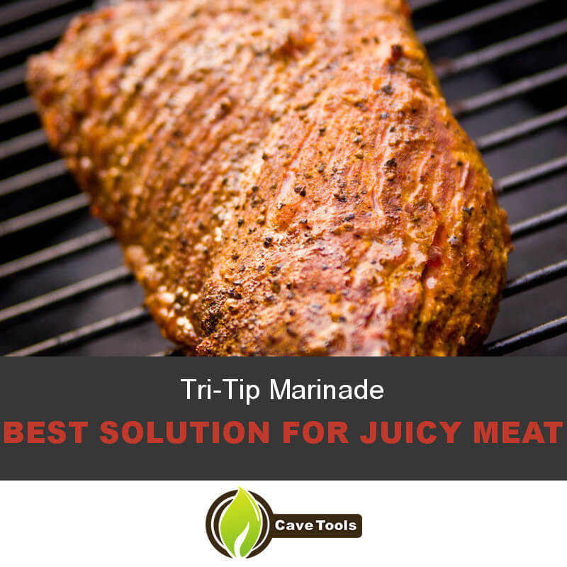 Tri-Tip Marinade Best solution for juicy meat
