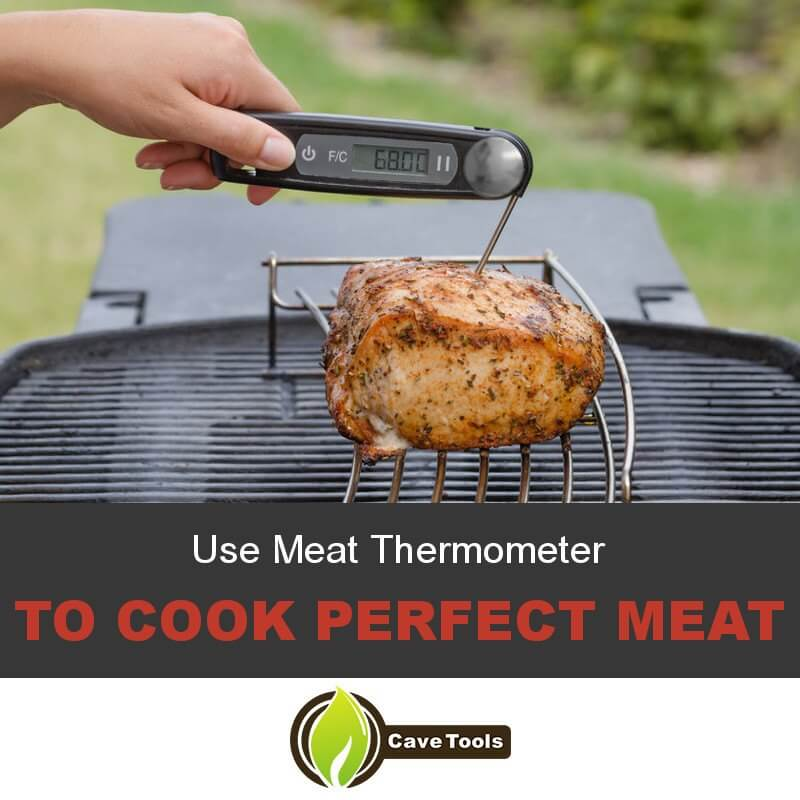 Use Meat Thermometer To cook perfect meat