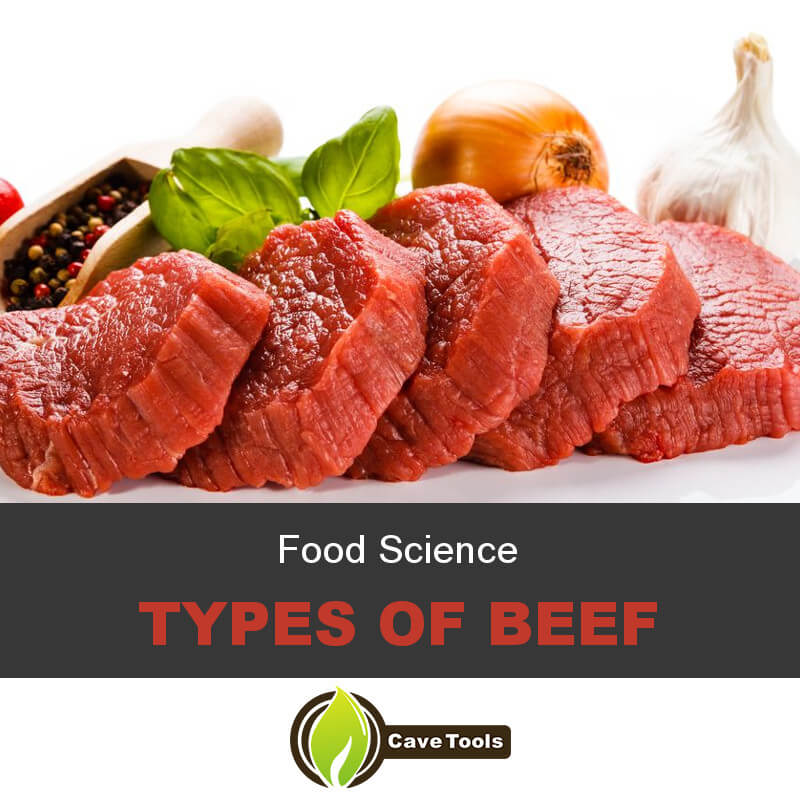 Food Science Types Of Beef