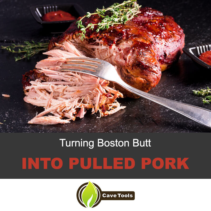 Turning Boston Butt Into Pulled Pork