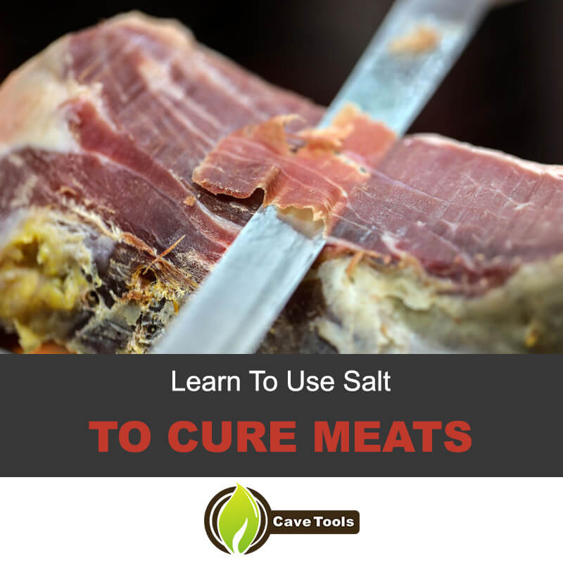 Use salt to cure meats
