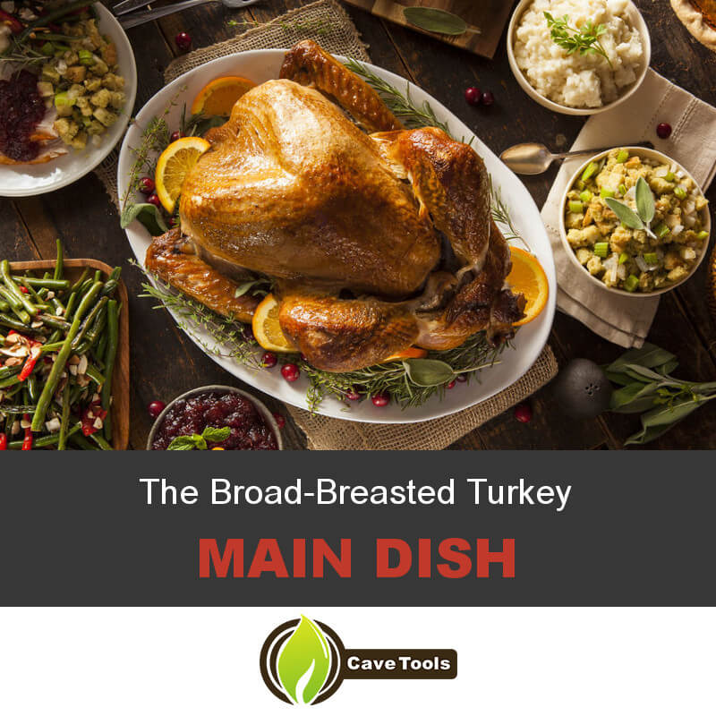 The Broad-Breasted Turkey Main dish