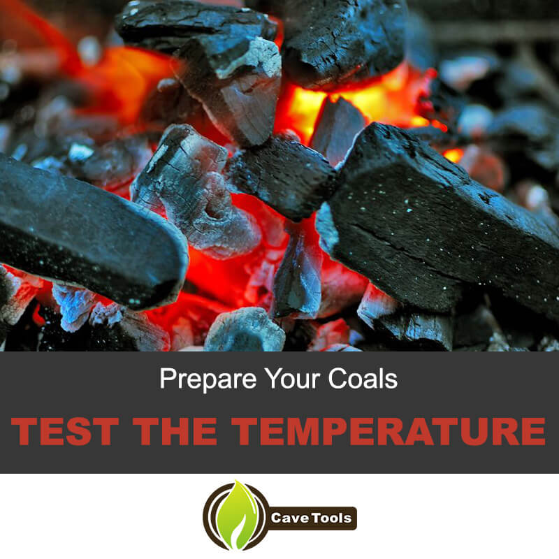 Prepare Your Coal Test The Temperature