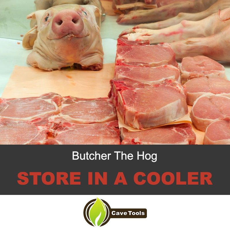 Butcher the hog