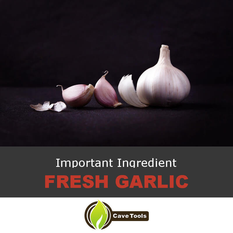 Important Ingredient Fresh garlic
