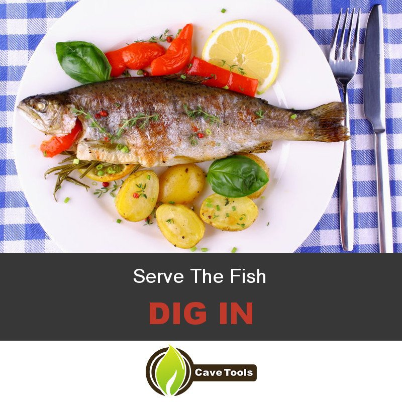 Serve The Fish Dig In