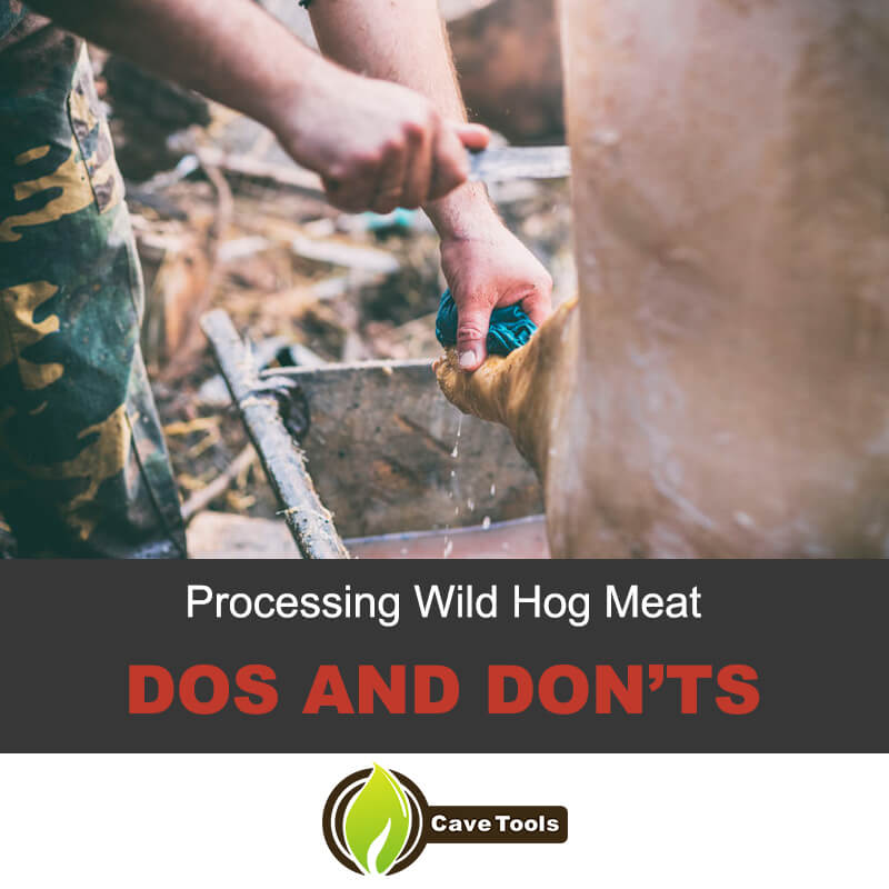 Processing WIld Hog Meat