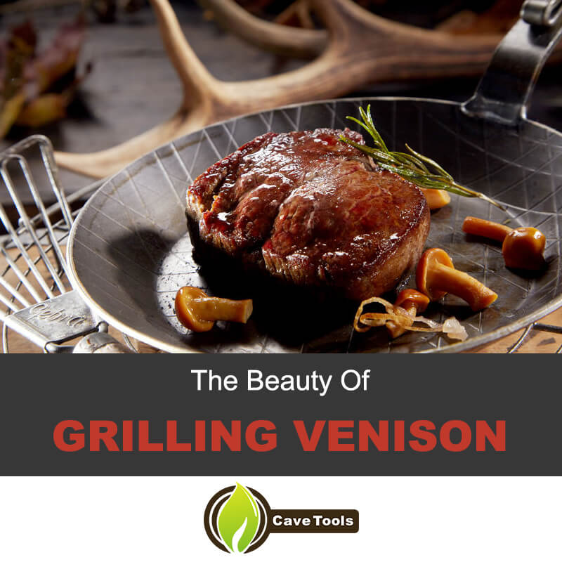 The beauty of grilling venison steak
